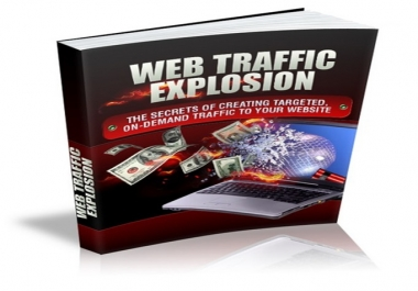 developing techniques to drive traffic to your website