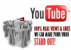 send 4,500 real people views to your Youtube video