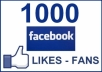 give you 1000 REAL HUMAN Facebook Fan Page Likes or Profile Subscribers
