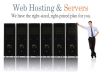 sale web hosting unlimited Normal Website for 12 months