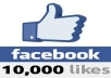 give you 10,000 REAL HUMAN not fake Facebook Fan Page Likes in 24 hours