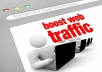 send 1000+ hits to website - organic traffic