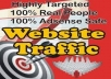 send 3000+ Unique Real Human Visitors to your LINK