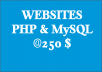develop customized websites