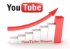 deliver 15,000 world wide YouTube views