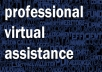 be your Professional Virtual Assistant for an hour