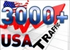 send 3000 USA Unique visitors to your website for 3 days guaranteed