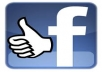 give you 500+ real FB likes