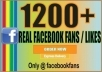 deliver 1200 + Bouns real facebook fan page likes